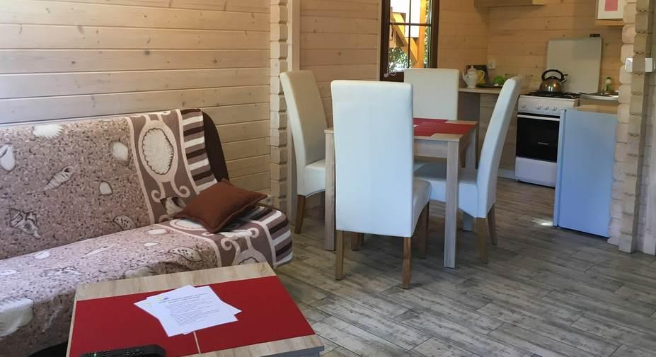 dom-wypoczynkowy-dajana-domek-salon